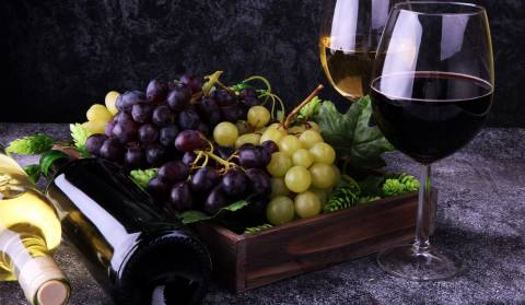 Vinistra 26. International Wine and Winery Exhibition