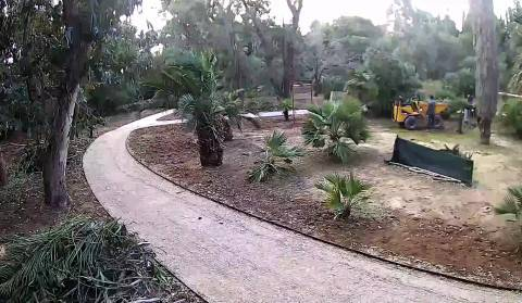 Lokrum Reserve - Path Improvements