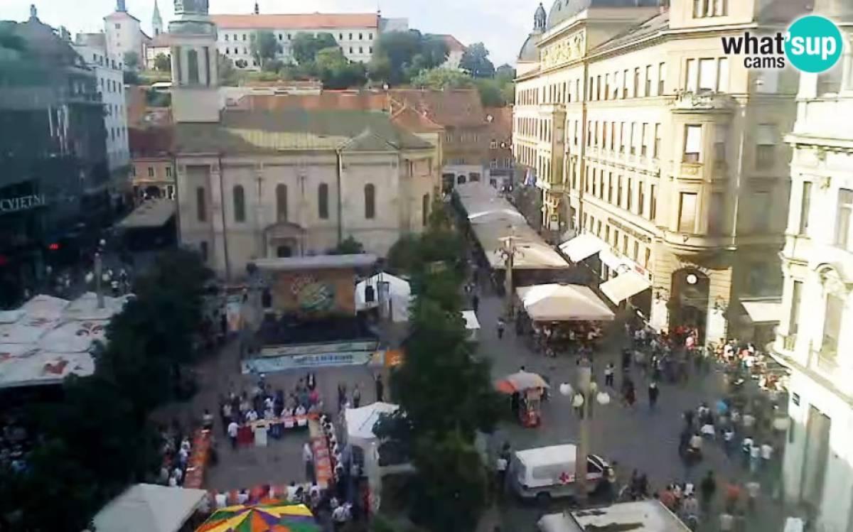 Zagreb Cvjetni Trg Zagreb Right Now Live