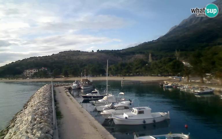 Živogošće, Blato - marina
