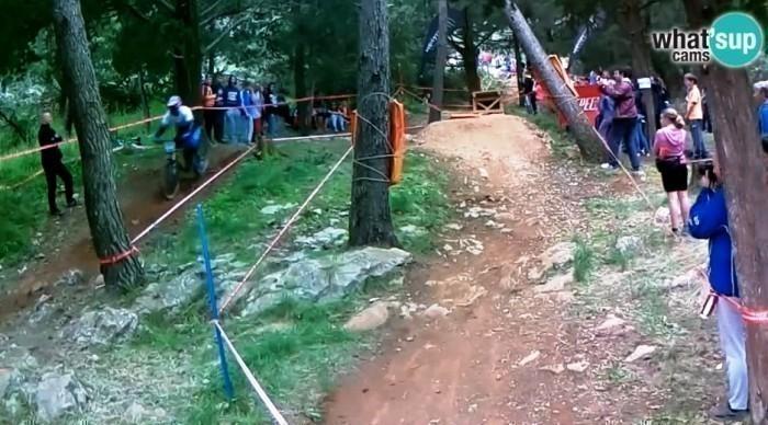 downhill62226.jpg