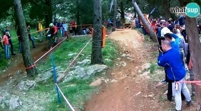 downhill6226.jpg