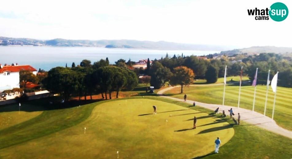 golf8543.jpg