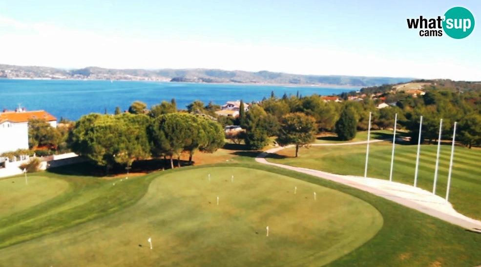 golfadriatic956356.jpg
