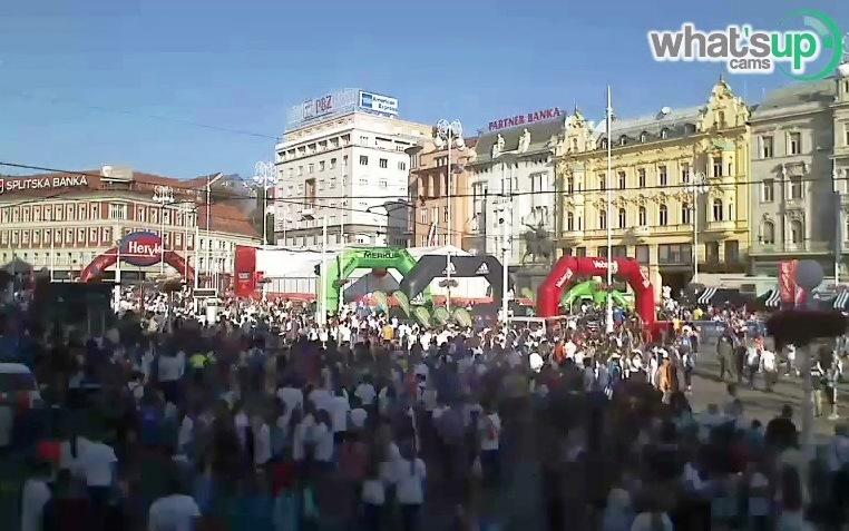 zgbmaraton212.10.14.jpg