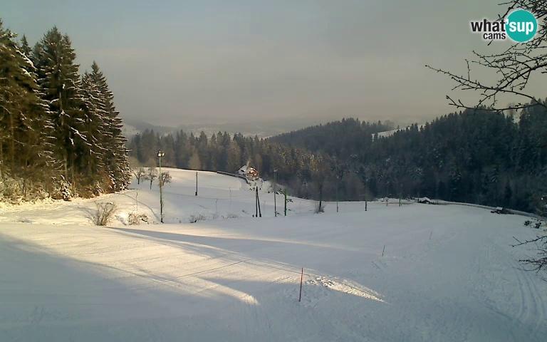si_bukovnik_2017-01-20-092554.jpg